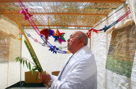 succos: Jewish man bless on the four species in the Sukkah in Sukkoth jewish holiday.
