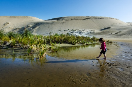 quicksand: Little girl play in a puddle in Te Paki sand dunes in Northland New Zealand.