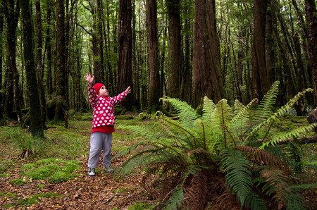 call for help: Little girl lost in the forest, call for help. Stock Photo