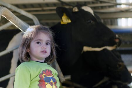 dairy farming: Farm girl with cows in a milking facility on July 07 2013.The income from dairy farming is now a major part of the New Zealand economy, becoming an NZ$11 billion industry by 2010.