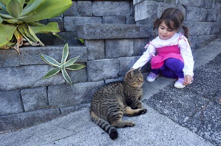 realtionship: Little girl petting a cat outdoor.Concept photo of pet , child, childhood, realtionship, care.