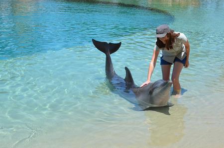 gold coast australia: Woman interact with Dolphin in Sea World Gold Coast Australia. Stock Photo