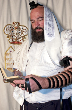 mishnah: An Israeli Jewish orthodox man prays in a synagogue, reads a torah book (siddur) and wears, tefillin, tzitzit and tallit.