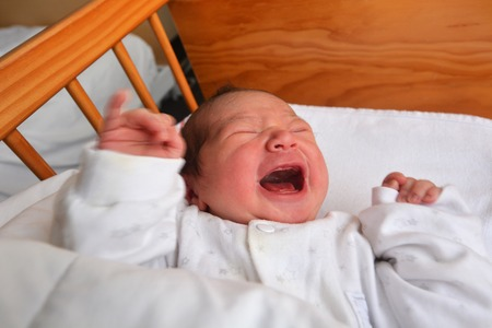 crying baby: Newborn baby (1 day old) screaming in baby cot bed. Stock Photo