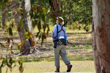 gold coast australia: Mature woman birdwatching watching with binoculars in Coombabah Lake Conservation Park IN Gold Coast, Australia Stock Photo