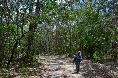 gold coast australia: Mature woman birdwatching in Coombabah Lake Conservation Park IN Gold Coast, Australia