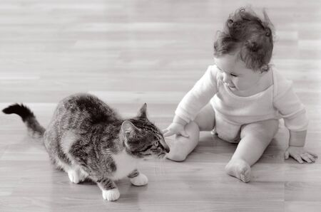 playful behaviour: Baby (girl age 06 months) sits and plays with a pet animal (domestic cat) at home. Concept photo animals and children. (BW)