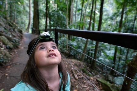 rainforest: Child (girl age 04) during a rainforest walk in Springbrook National Park in Queensland Australia.