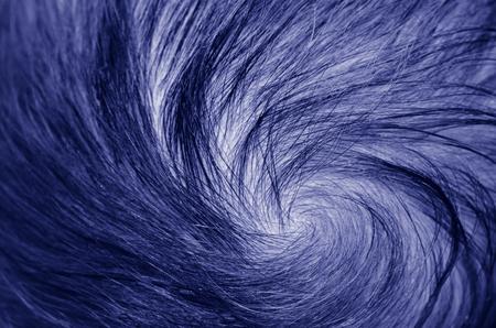 natural childbirth: Newborn baby scalpwith spiral hair shape. (BW) Stock Photo