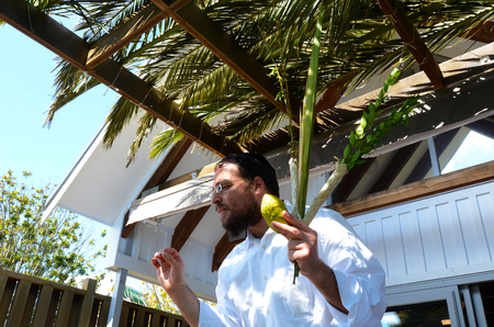 tabernacles: AUCKLAND - SEP 29 2015:Orthodox Jewish man bless the four spices in a sukkah on Sukkot Jewish holiday.The waving of the four plants is a Mitzvah contains symbolic allusions to a Jews service of God. Editorial