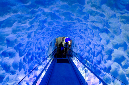 nz: AUCKLAND, NZ - APRIL 26: The Ice tunnel of Kelly Tarltons sea world on April 26 2013.It have the worlds largest Antarctic penguin colony exhibit.