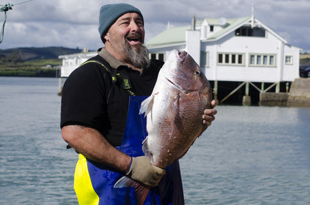 fishingboat: MANGONUI, NZ - JULY 25:Fisherman holds very large Snapper on July 25 2013.NZ exclusive economic zone covers 4.1 million km2,Its the 6th largest zone in the world and 14 times the size of NZ.