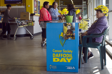 nz: KAITAIA, NZ - AUG 29:Donation stand of Daffodil Day on Aug 29 2013.Since 1990 the NZ Cancer Society, Daffodil Day, provides an opportunity to raise awareness to cancer in New Zealand. Editorial