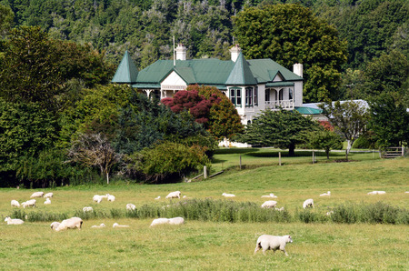 romney: GLENORCHY, NZ - JAN 13:An old sheep station in Paradis on Jan 13 2014.New Zealand is home to 3 million people and 60 million sheep.