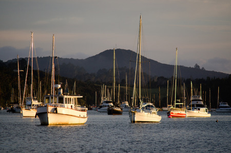 owing: OPUA, NZ - DEC 12:Opua marina on Dec 12 2013.Its a 250-berth Marina, popular destination for cruising yachts owing to its sheltered, deep water anchorage, and numerous facilities for cruisers.