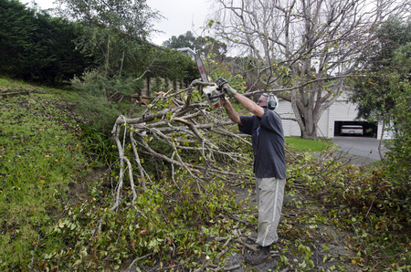 act of god: MANGONUI, NZL - JULY 09 2014:A man cutting a storm damaged tree.High winds lashing the upper North Island of New Zealand have knocked down trees, blown roofs off houses and cut power to thousands.