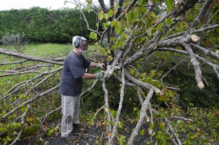 MANGONUI, NZL - JULY 09 2014:A man cutting a storm damaged tree.High winds lashing the upper North Island of New Zealand have knocked down trees, blown roofs off houses and cut power to thousands.