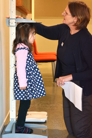 measure height: AUCKLAND - JULY 30 2014:Pediatrician nurse measure and examining child girl height Talya Ben-Ari age 4 in clinic. Editorial