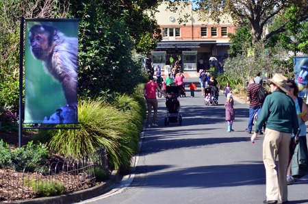 animals in the zoo: MELBOURNE, AUS - 12 DE ABRIL 2014: Visitantes en The Zoological Gardens Zoo.Melbourne zool�gico real de Melbourne es el zool�gico m�s antiguo de Australia (1862) y fue inspirado en el zool�gico de Londres.