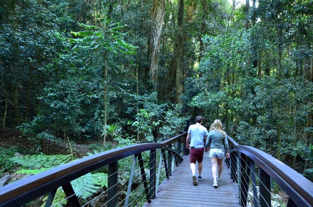 GOLD COAST - OCT 06 2014:Couple visit in Springbrook National Park in Queensland Australia.Its a World Heritage Rainforest featuring many waterfalls, trees and wildlife. Redakční