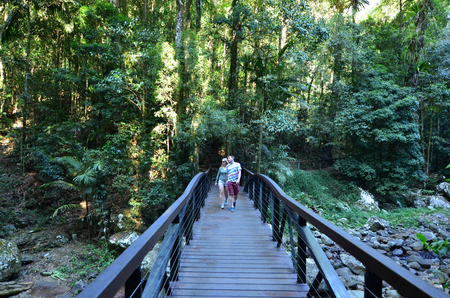 bridge in nature: GOLD COAST - OCT 06 2014:Couple visit in Springbrook National Park in Queensland Australia.Its a World Heritage Rainforest featuring many waterfalls, trees and wildlife. Editorial