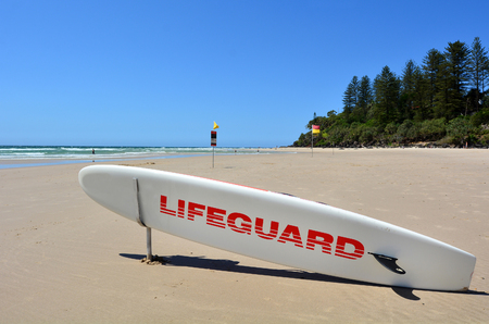 observant: COOLANGATTA - OCT 07 2014:Lifeguard paddle board in Gold Coast Australia.Australian Lifeguards are world-renown for their high levels of skill and knowledge in accident prevention and rescue response