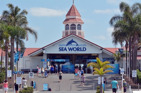 GOLD COAST, AUS -  NOV 06 2014:Visitors in Sea World Gold Coast Australia.Its sea animals theme park that promote conservation education, rescue and rehabilitation sick, injured or orphaned wildlife. Editorial