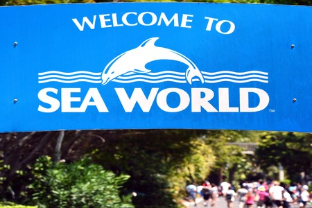 orphaned: GOLD COAST, AUS -  NOV 06 2014:Visitors in Sea World Gold Coast Australia.Its sea animals theme park that promote conservation education, rescue and rehabilitation sick, injured or orphaned wildlife. Editorial