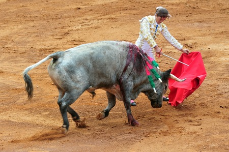 toros bravos: CIUDAD DE MÉXICO - 01 de marzo: Un Matador y un toro están en un punto muerto antes de participar en una batalla corrida el 1 de marzo de 2010 en la ciudad de México, México.