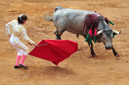 matadors: Bull-fight in Plaza de Toros Bull Ring Mexico City.