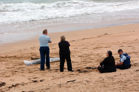 CABLE BAY, NZL - MAR 02 2015:Police officers investigate eyewitness that found body washes ashore.According to International Rewards Center about 607 people go missing every day around the world.