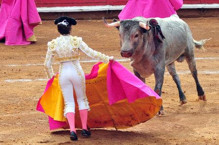 corrida de toros: Un Matador y un toro están en un punto muerto antes de participar en una batalla corrida de toros en la ciudad de México.