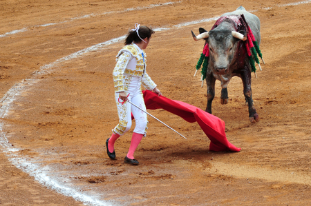 plaza de toros: MEXICO CITY - MARCH 27: A Mexican woman Matador and a bull are in a standoff before engaging in a bullfight battle at the Plaza de Toros on March 20 2010, Mexico City.