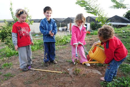 sembrando un arbol: ASHKELON - 09 de febrero: los niños israelíes plantar un nuevo árbol en el jardín durante la fiesta judía de Tu Bishvat en Ashkelon el 9 de febrero 2007.It es una festividad judía que marca el Año Nuevo de los árboles.