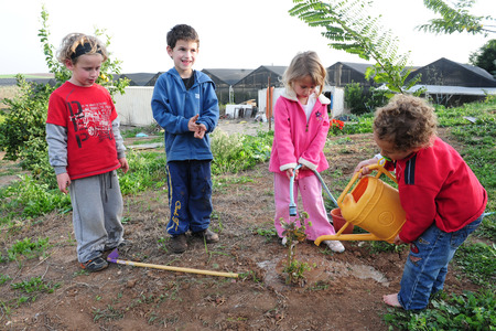 ASHKELON - FEB 09: Israeli children plant a new tree in the garden during the Jewish holiday of Tu Bishvat in Ashkelon on February 9 2007.It's a Jewish holiday that marks the New Year of the Trees. Éditoriale