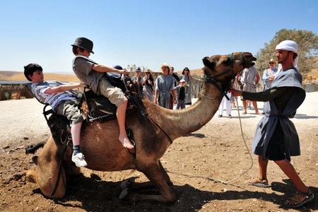 animales del desierto: JERICÓ - 17 de septiembre: Los turistas paseo en camello durante el 17 de septiembre de 2008 en el desierto de Judea, Israel.It es un desierto de sombra de lluvia situada entre Jerusalén a Jericó 85 millas de largo y 25 millas de ancho.