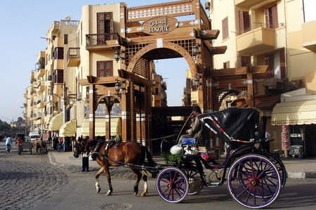 egypt revolution: LUXOR - MAY 02:An empty Horse and Carriage on May 02 2007 in Luxor, Egypt.The number of tourists visiting Egypt dropped by more than a third since the Egyptian revolution on Jan 25 2011. Editorial