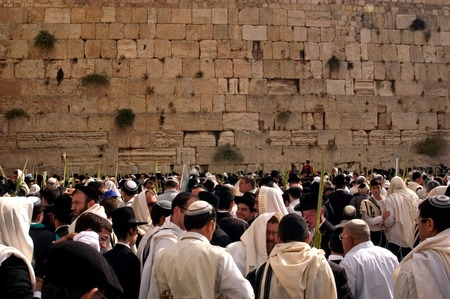 hassid: JERUSALEM - OCT 14: Orthodox Jewish pray at the Western Wall during the Jewish holiday of Sukkot on October 14 2008 in Jerusalem, Israel.