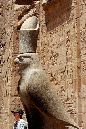 horus: EDFU - 01 de mayo: Estatua de Horus en el Templo de Edfu el 01 de mayo de 2007 en Edfu, Egypt.It de bien conservado la mayor parte de los antiguos templos egipcios en todo Egipto.