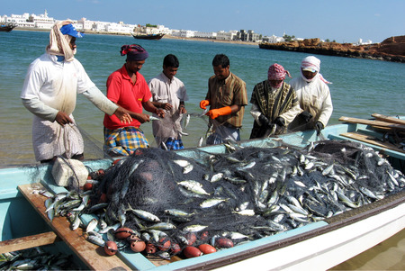 pescador: Sur, Om�n - 30 de diciembre de 2007: Pescadores oman�es durante el trabajo en el pueblo pesquero de Sur en Sur, Om�n. Hist�ricamente la ciudad es conocida por ser un punto de destino importante para el comercio mar�timo entre Asia y �frica.
