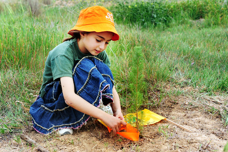 WESTERN NEGEV - FEB 09: Israeli girl plant trees during the Jewish holiday of Tu Bishvat in the western Negev on February 9 2009.Its a Jewish holiday that marks the New Year of the Trees.