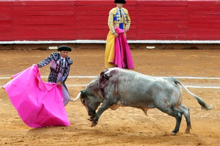 violence in sports: MEXICO CITY-MARCH 1:An unidentified Matadors and a bull during a bullfight battle on March 1, 2010 in Mexico city, Mexico.Today many people call to banned this sport as Its involved in animal torture.