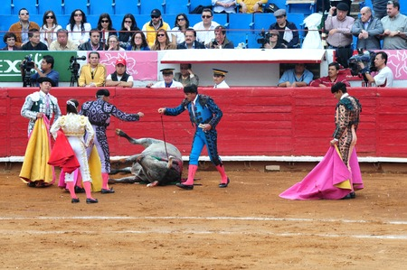 matadors: MEXICO CITY-MARCH 1:An unidentified Matadors kills a bull during a bullfight battle on March 1, 2010 in Mexico city, Mexico.Today many people call to banned this sport as Its involved in animal torture.