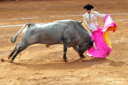 bull rings: MEXICO CITY - MARCH 1: An unidentified Matador and a bull are in a standoff before engaging in a bullfight battle on March 1, 2010 in Mexico city, Mexico.