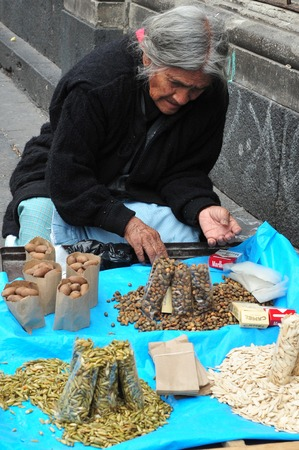 documented: MEXICO CITY- FEB 23:Mexican old woman selling dry seeds on February 23 2010 inMexico city, Mexico.The oldest documented germinating seed was nearly 2000 years old. Editorial