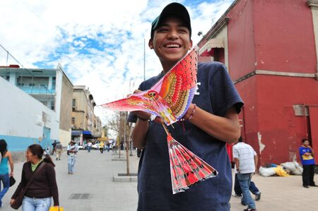 world record: MEXICO CITY - FEB 23: Mexican man play with his bird kite on February 23 2010 in Mexico City, Mexico.The world record for the longest kite fly is 180 hours.