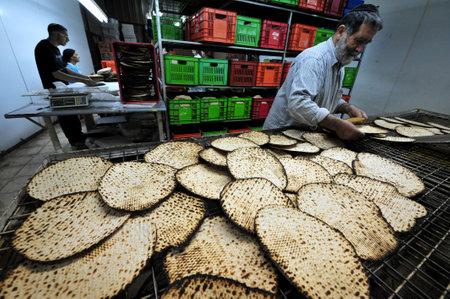 santa cena: JERUSAL�N-MARZO 16: Los hombres jud�os ortodoxos preparan matz� kosher glat hecho a mano el 16 de marzo de 2010 en Jerusal�n, Israel.