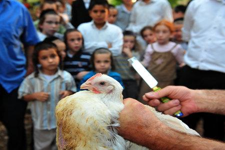 atonement: ASHDOD - SEPTEMBER 15 : Jewish children look at Kaparot ceremony held on September 15 2010 in Ashdod Israel.
