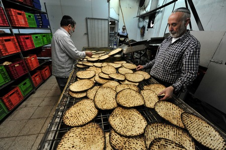 judaical: JERUSALEM -MARCH 16: Orthodox Jewish men prepare hand-made glat kosher matzah on March 16 2010 in Jerusalem, Israel.