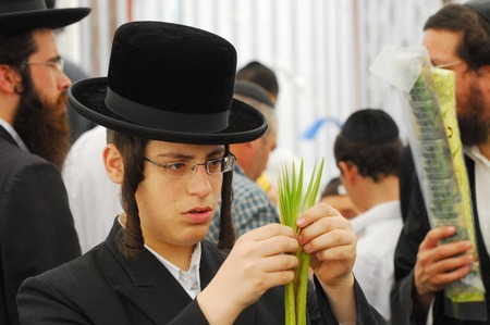 sukkoth festival: ASHDOD - OCTOBER 12 : Jewish ultra-orthodox TENNAGER inspect Lulav at a four species market for the Jewish holiday of Sukkot on October 12 2011 in Ashdod,Israel.